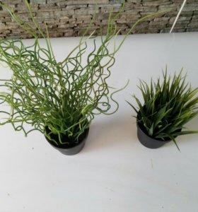 Декоротивные искусственные растения