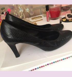 Туфли змеиная кожа 39 размер женская обувь