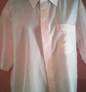 Муж.рубашка с коротким рукавом