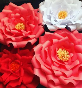 Цветы из бумаги для фотосессии или праздника