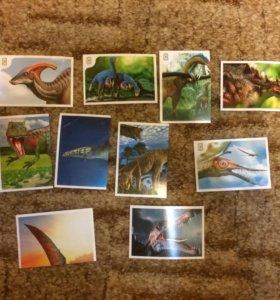 """Наклейки """"Смотри динозавры!"""" В Дикси"""