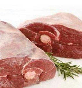 Мясо говядина молодняк.