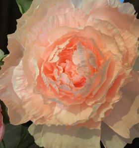 Гигантские цветы. Декор на свадьбы