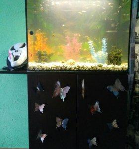 Аквариум 77 л. с тумбой, рыбками, грунтом, декором