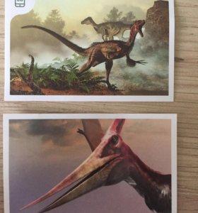 Наклейки динозавры из Дикси