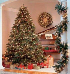 Новогодние елки(сосна)