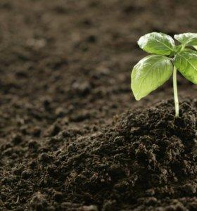 Грунт плодородный в мешках и россыпью