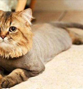 Стрижка кошек/собак