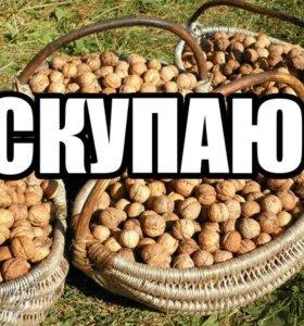 ПРИНИМАЮ Грецкий Орех