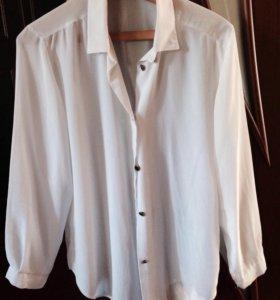 Женская блузка 48-50