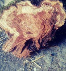 Дрова слива груша шелковица