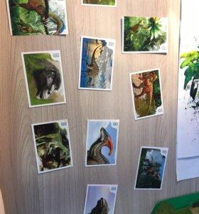 3D карточки динозавры