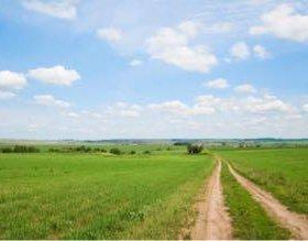Участок, 12000 сот., сельхоз (снт или днп)