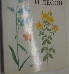 Растения полей и лесов . Вацлав Ветвичка