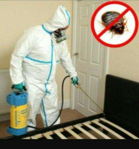Уничтожение насекомых!