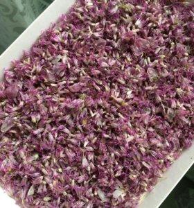 Цветочки лука (сухоцвет)