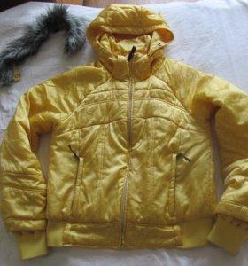 Куртки зима и демесизонки