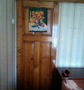 Двери выдвежные с механизмом