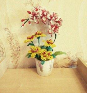 Цветы (орхидея )