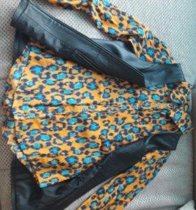 Кожаная жилетка + рубашка (новое)