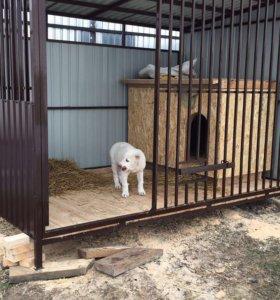 Вольер с будкой и собакой