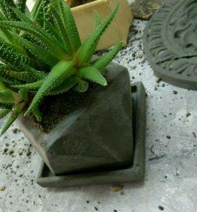 Горшок для суккулентов,кактусов