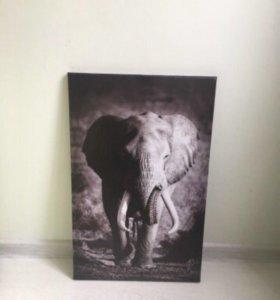 """Картина """"Слон"""""""
