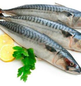 Слабосолёная рыба оптом
