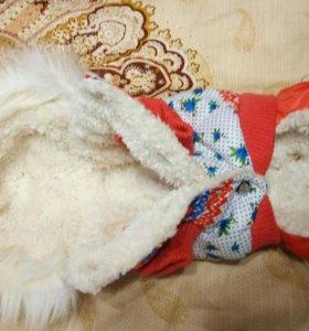 Комбинезон на собаку чихуахуа