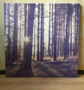 Рассвет в лесу #Картина_на_холсте