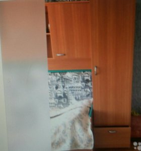 Шкафы Мыски(ГРЭС)