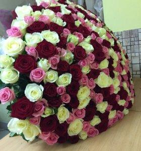 301 роза микс с доставкой
