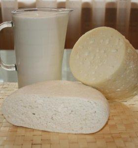Прекрасное козье молоко, молодой сыр