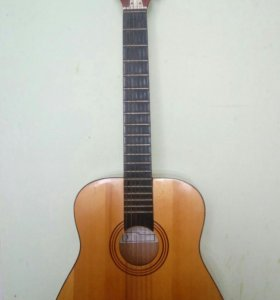 Гитара 12-ти струнная