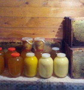 Мёд,пыльца,перга