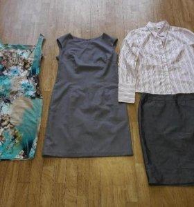 Женская одежда юбки платья рубашки костюмы джинсы