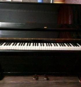 Фортепиано бесплатно ноты в подарок