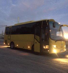 Заказ автобуса от 8 до 50мест