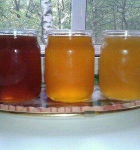 Мёд-Гречишный,разнотравье,подсолнечный