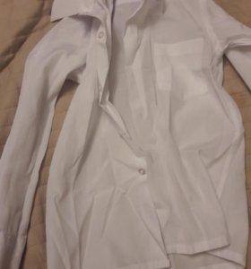 Рубашка белая, брючки на мальчика 4-5 лет