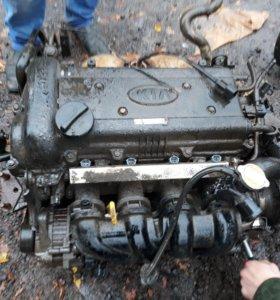 Двигатель 1.4 киа рио kia rio 3