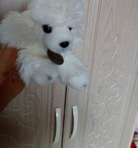 МЯГкоя игрушка(сабачька)