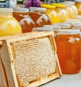 Мед натуральный со своей пасеки