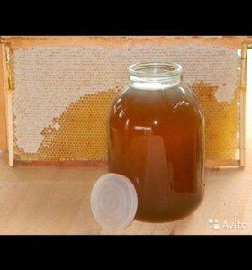 Мед и медовые соты