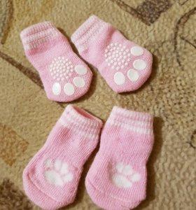 Носочки для животных