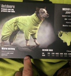Одежда для собаки.