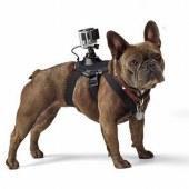 Крепление на собаку для экшн-камер GoPro/sjcam
