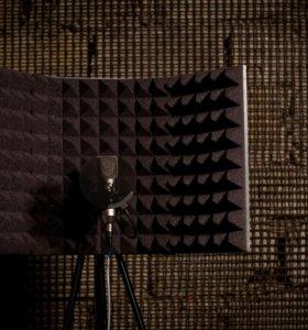 Выездная звукозапись