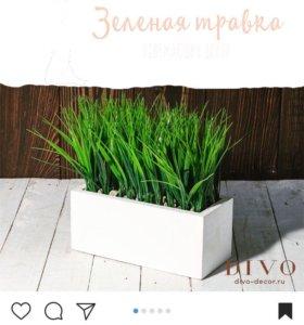 Кашпо с травой