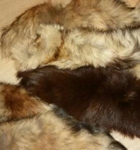 Натуральные меховые хвосты-брелоки